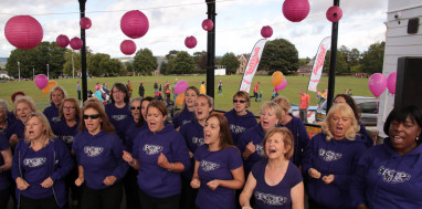 the-vine-sevenoaks-for-breast-cancer-care-saturday-1st-october-2016